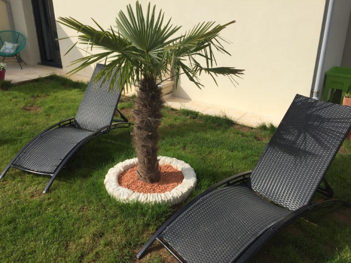 Chambre-d-hotes—Les-Chambres-du-Pressoir—repos-aupres-du-palmier