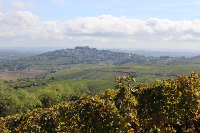 Domaine-Pierre-Martin—panorama-Sancerre