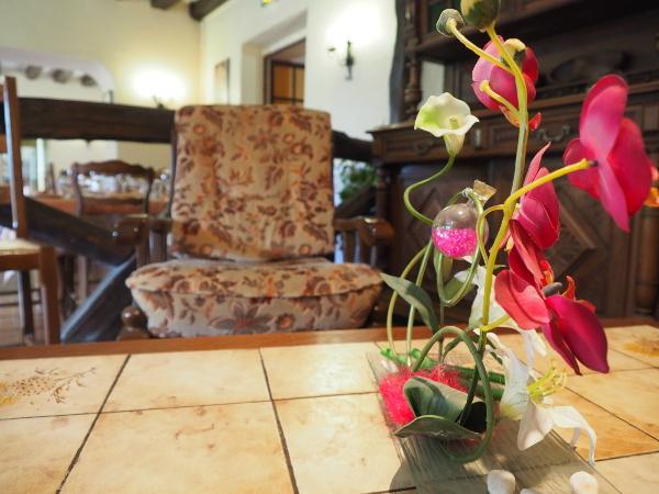 HOTEL LOGIS L'ESTERILLE BUE DETAIL SALON