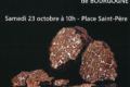 Marché aux truffes de Bourgogne