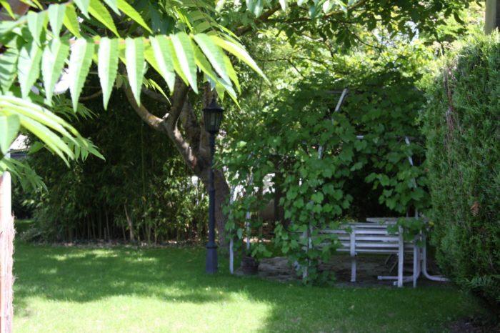 Restaurant-Le-Ptit-Berry—Jardin