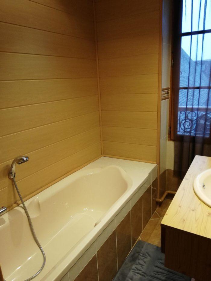 Vanessa-et-Julien-Mitteau—Apt-1—Salle-de-bain
