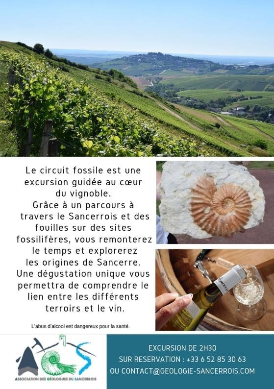 flyer-Sancerre-Jurassic-Tour