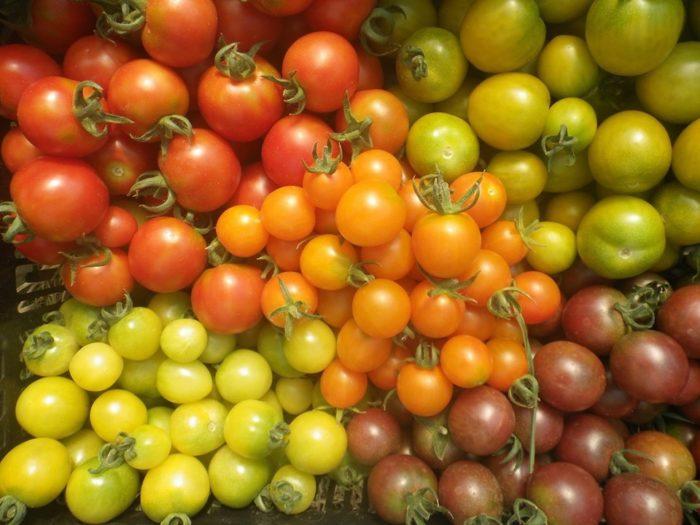 La Fabrique à Légumes